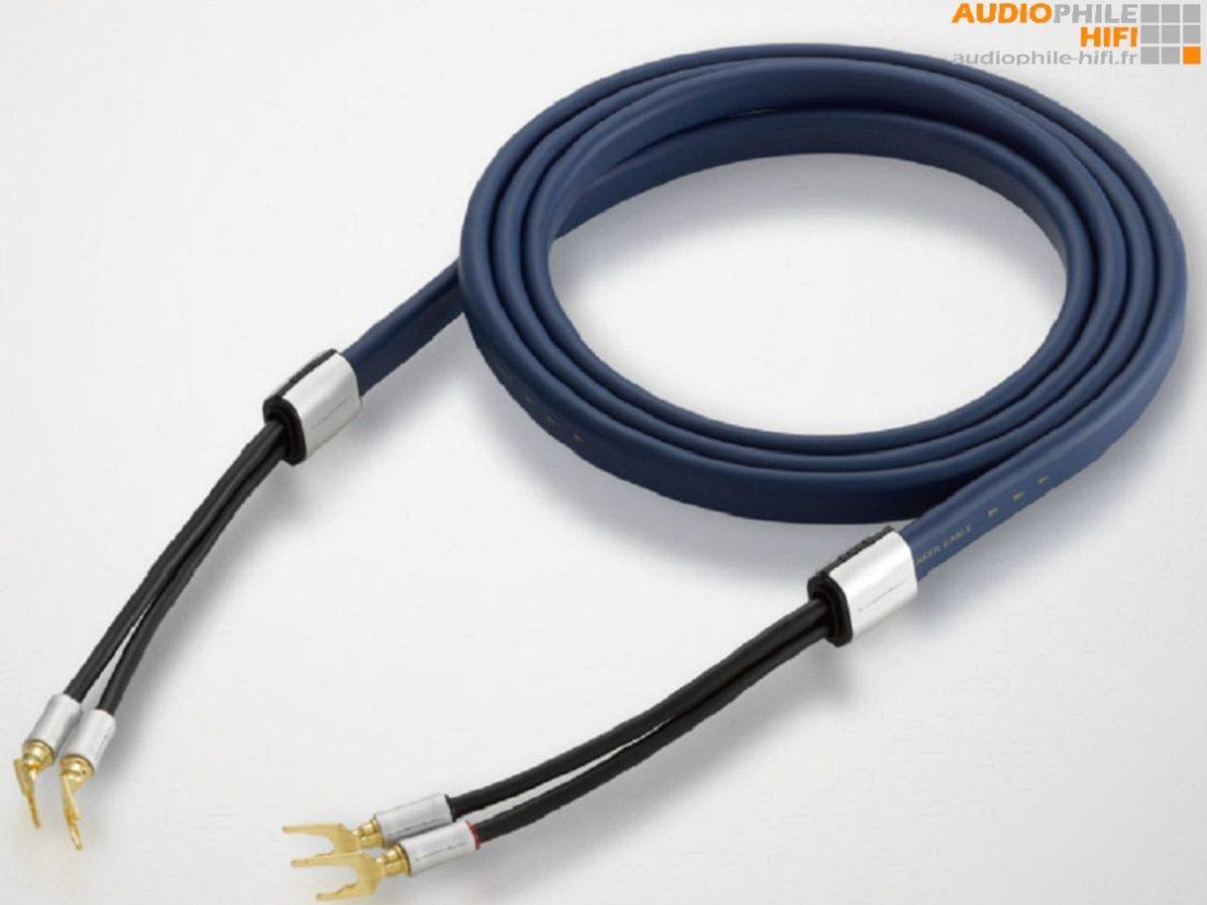 câble RCA